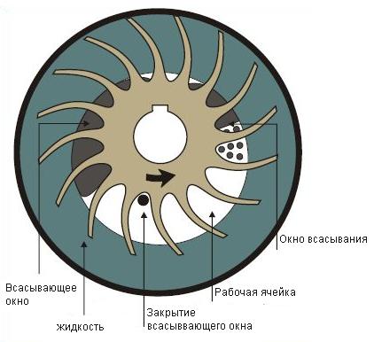 Принцип работы жидкостно - кольцевого компрессора.